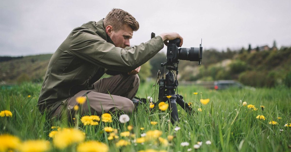 Sử dụng chân máy bất cứ khi nào có thể. Đó là cách hạn chế tối đa việc rung hình và mất nét khi chụp hoa.